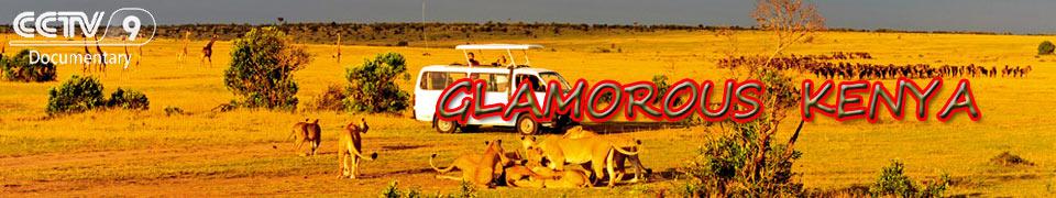 galmarous kenya cctv wcetv rc media